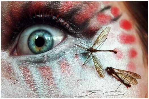 Insectophobia by PixieCold