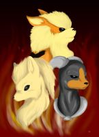 Fire Trio by mushydog