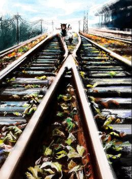 the rail by xiner