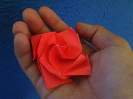 A Rose by weuxj