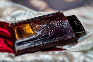 Assassin's cell phone case by Force4Photos
