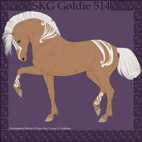 SKG Goldie 514 - group horse by BaliroAdmin