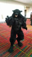 Real Werewolf! by SilverWolfCostuming