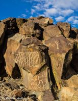 Nevada Petroglyphs150118-58 by MartinGollery