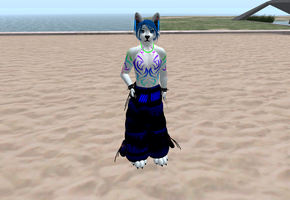 Second Life me by Damfurrywolf