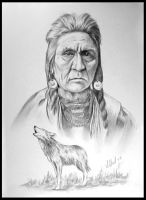 Wolf an Apsaroke Indian by willow1