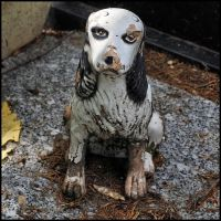 Cemetery of Dogs and Other Domestic Animals - 10 by SUDOR