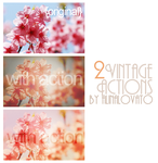 Vintagee 65th Action by alinalovato