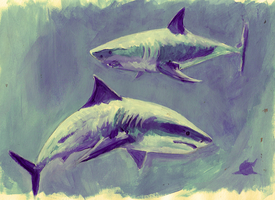 Sharks by DeatHerald