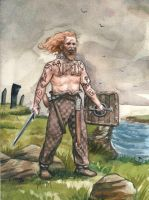 Pictish warrior by deWitteillustration