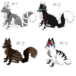 .: Cat adoptables OPEN 1 LEFT :. by SaachiPrime