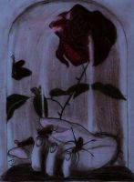 Rose in the glass color by spongy-tweety