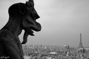 Brooding Over Paris by lynsea