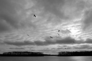 Clouds over the Mississippi by tracy-Me