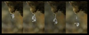 Drip Sequence by Cantabrigian