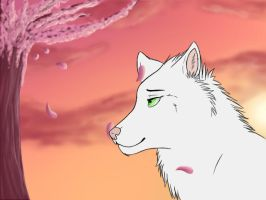Wind Whispers by Midnightwolfx3