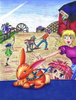County Fairbook Cover 2005 by Poofiemus