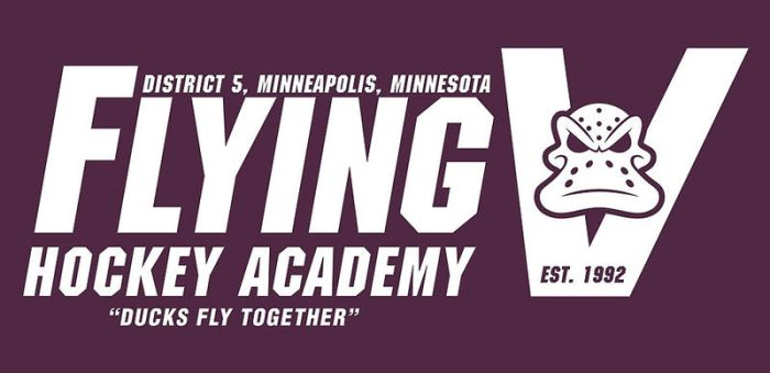 Flying V Hockey Academy by wildwing64