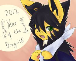Year of the Dragon by Ikari-Sora