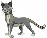 ravenpaw by kotenokgaff on - photo #7