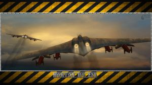 3RD REICH LW Horton 229s by PanzerBob