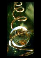 Cycles of Life 2 by Forestina-Fotos