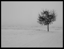 snow series by Killer-Barbie2156