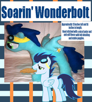 Soarin Plush - SOLD by That-CrazyCat