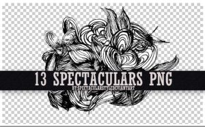 13 spectaculars png by spectacularstyle