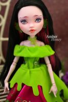 Draculaura Repaint by Amber-Honey