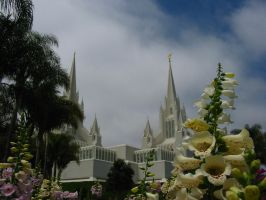 San Diego Temple and Flowers 1 by skoticus