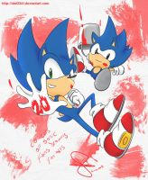 Sonic 20 years of fanarts by idolnya
