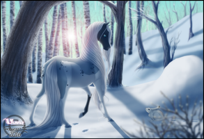 CRPG SS | Silver Woods by Lilafly