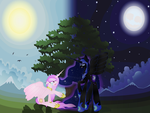 Good Night To Your Sun! by ZarinaRose912
