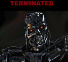 Terminated by PeterAJ