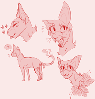 {DoD} Topaz Sketches by catbae
