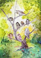 The Owl Story by joanniegoulet