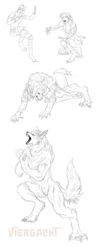 Bloody Roar werefox commission by Viergacht