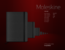 Moleskine icon set by hbielen