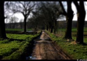 Such a small path... by Hluthvik