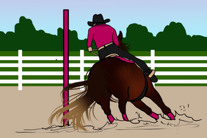 Cheese: On-Going Poles by Shining-Spurs-Ranch