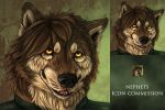 Nephets set of icons by AnsticeWolf