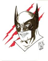 Wolverine Ink and Marker head Sketch by JSimonART