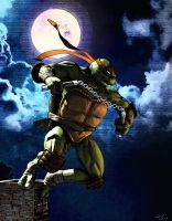 My ninja turtle deviation from emilcabaltierra Art by monstre210