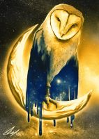 Owl and Moon by HunDrenus