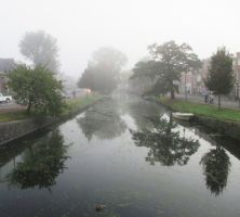 mist in the morning by marob0501