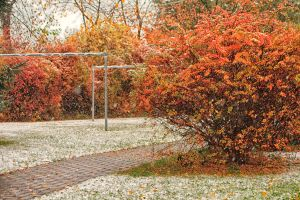 Herbst09 by Anschi71
