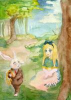 Alice meets the White Rabbit by TanzerDragon