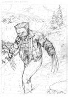 The Wolverine by TheElysian