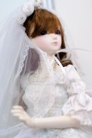 The Bride by angora-cat